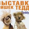 TeddyFun. Форсайт-проект
