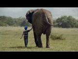 Очень классная реклама Родителей заменили дикими животными