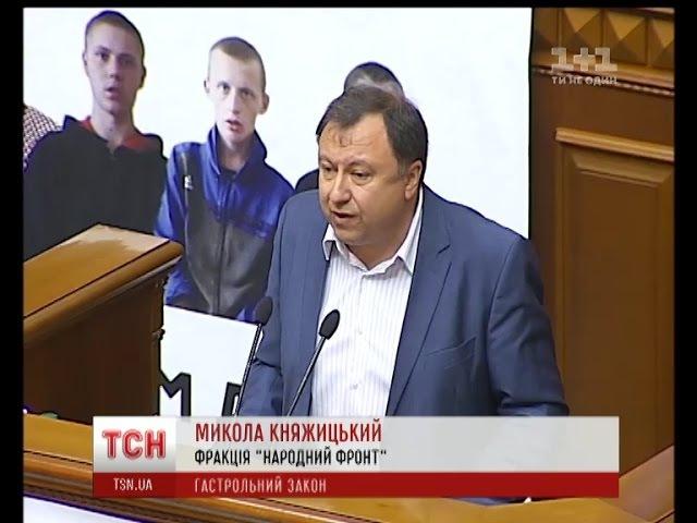 ВР розглянула ініціативу Народного фронту про заборону гастролей російських митців