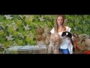 Представляем вашему вниманию «Дневник добрых дел» Котельниковой Алисы - Юной Мисс Украины 2017