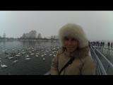 Впечатления Оли Шишкаловой об однодневной поездке на Лебединое озеро