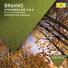 Иоганнес Брамс - Симфония №4, IV