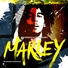 Bob marley the wailers