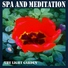Meditation spa music - Deep forest