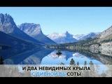 Льется музыка, Добрынин Вячеслав караоке и текст песни