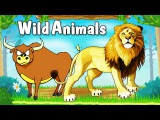Learn Types of Wild Animals  Animated Video For Kids  English Learning Videos for Kids