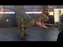 Роботы Динозавры. Японское чудо