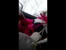 катаємось з доцьой)).ухх ,аж душу відвели)вже давненько ми не сідали за кермо)) Доцюня звикла в машині засинати))Сонні оченятка
