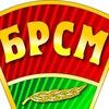 "Лельчицкий РК ОО ""БРСМ"""
