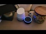 Echo⁄Google Home infinite loop