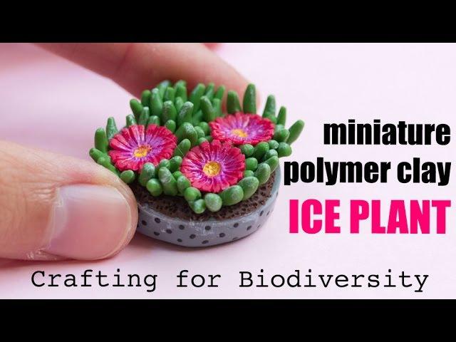 Ice Plant Carpobrotus edulis Invasive Crafted Species