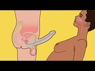 Видеоурок: как правильно заниматься сексом. домашнее частное видео не порно секс цп дп шлюха минет анал мастурбация зрелые жёсткое изнасилование хуй сиськи пизда влагалище