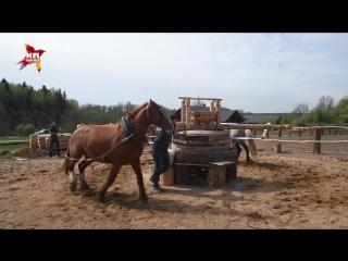 Ярмарка Германа Стерлигова: крестьяне на вертолетах, покупатели — на бронированных «мерсах»