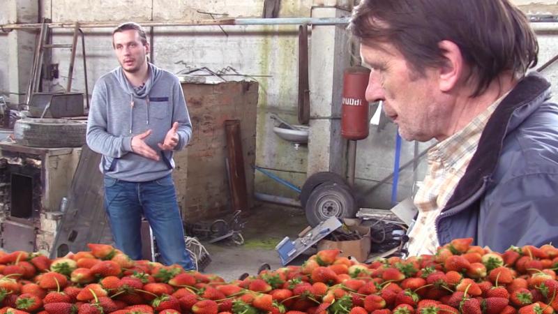 Клубничный стартап отца и сына из Украины