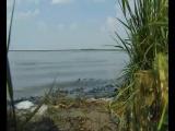Никакушное...облезлое) было озеро Лебяжье....а теперь смотрите каким его увидел оператор)