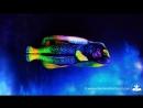 Angelfish - Fine Art Bodypainting by Johannes Stötter