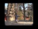 Shaolin Yi Lu Luohan Quan 少林一路罗汉拳