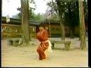 Shaolin Luohan Quan Yi Lu from Shi Degen lineage
