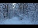 ♫ Наедине с Музыкой и Природой. Эдгар Туниянц - Разбитые чувства. Edgar Tuniyants - Broken feelings.
