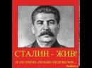 Сталин вставай