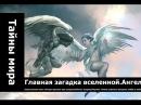 Главная загадка вселенной.Ангелы и демоны. существует ли жизнь после смерти ору ...