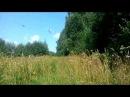 Неудачная попытка проехать по старой лесной дороге на Патриоте
