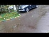 1 видео, Последствия урагана в Москве 29,05 2017 год