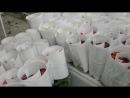 Цех обработки розы на плантации в Эквадоре