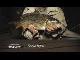 Ночные Карпы. Рыбалка в стиле