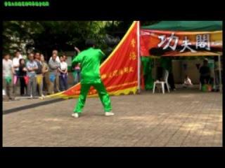 Seven Star Tanglang Quan(七星螳螂拳)-白猿出洞(09年功夫閣)