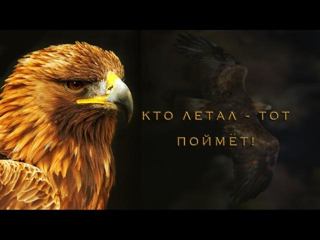Кто летал - тот поймёт! - Клип - Егор и Наталия Лансере Новые христианские песни - Орел