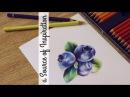 КАК РАСКРАШИВАТЬ КАК БОСС ♡ Как рисовать цветными карандашами секреты техники