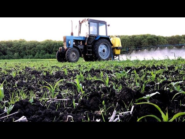 Гербицид на кукурузу от злаковых и двудольных сорняков СельхозТехникаТВ