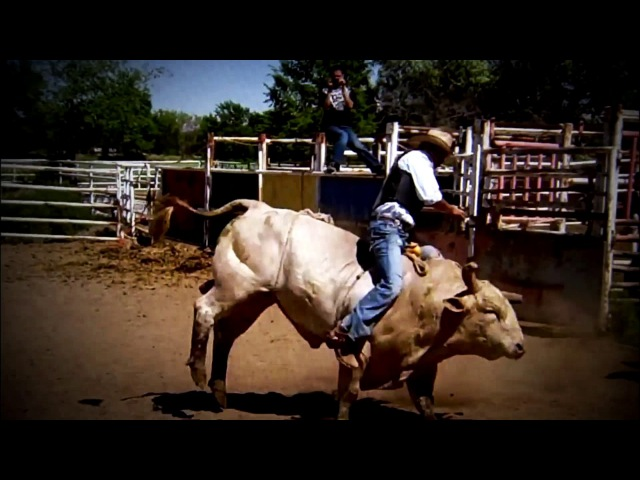 Donald Cerrone / Cowboy / Highlights / by cohors23