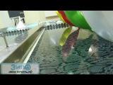 Аквапринт Пленка для аквапечати Кожа рептилии КШ2 от ЗипО