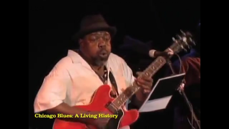 Lurrie_Bell_-_I_Believe_-_Chicago_Blues__A_Living_Historyraisinmusic329