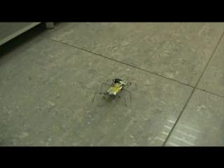 робот таракан из скрепок ,,Желтый ПО