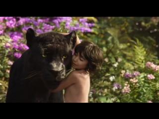 «Оскар» за одну минуту: визуальные эффекты
