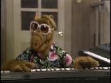 Alf-Benimnan oynama #NTG · #coub, #коуб