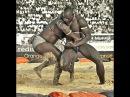 Африканские боевые искусства: Сенегальская борьба Laamb: Этих монстров да в октагон!