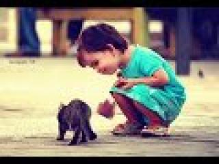 ГЕРОИ СРЕДИ НАС подборка ( добрые поступки, достойны уважения, спасения, помощь ) 1