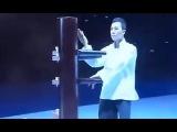 Donnie Yen Wing Chun and Tai Chi performance Донни Йен  демонстрация тайцзи и винчунь