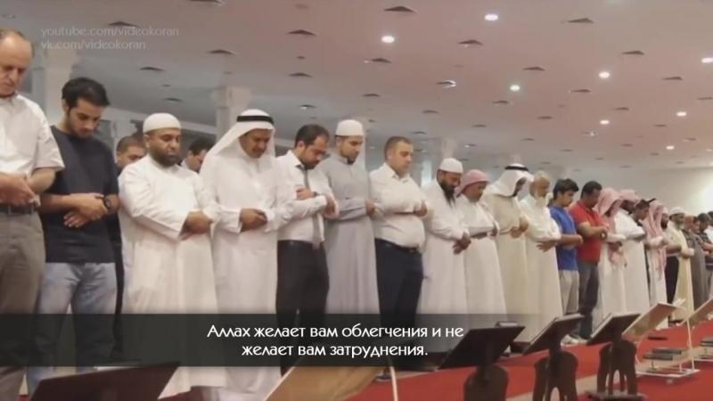 Tawfeeq Sayegh _ Сура 2 «аль-Бакара» 185-186