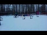 05.02.2017 А1 Пионерская, метис Пумка