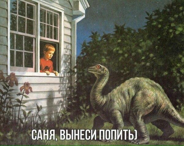 Александр Вандер, Москва - фото №2