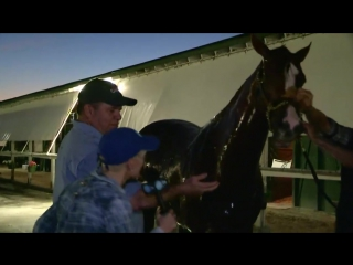 XBTV - Zoe Cadman visits with CaliforniaChrome and his...