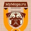 MyMops.ru- =Мопс= Мопсы=Мопсики=