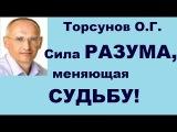 Торсунов О.Г.Сила РАЗУМА, меняющая СУДЬБУ!