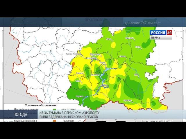 Лесные пожары: Прикамье в зоне риска