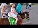 Funny Baby play with animals on the playground Nursery Rhymes Songs for children, babies and toddler